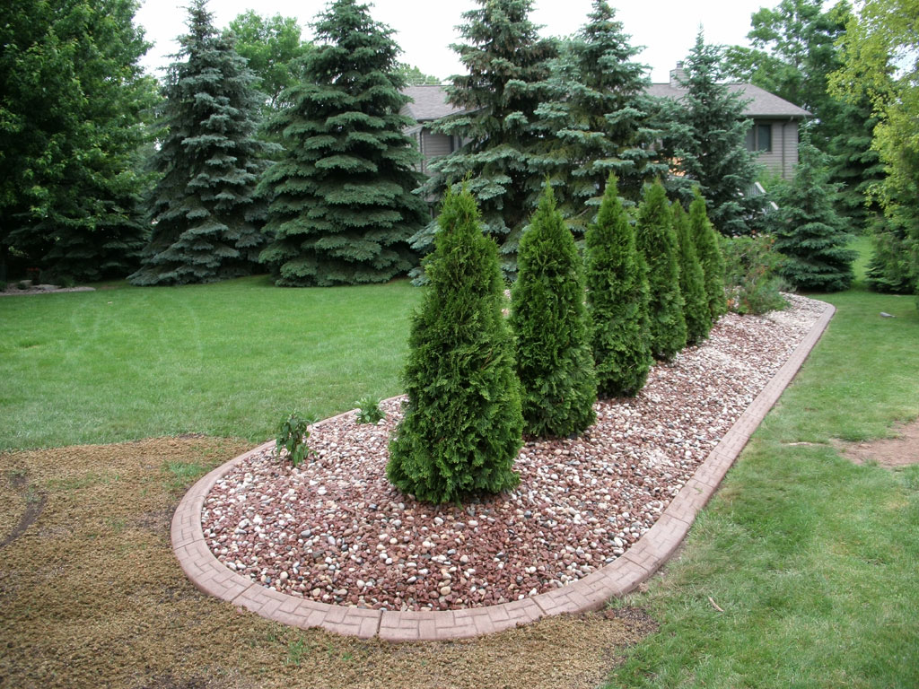 trees, shrubs and plants